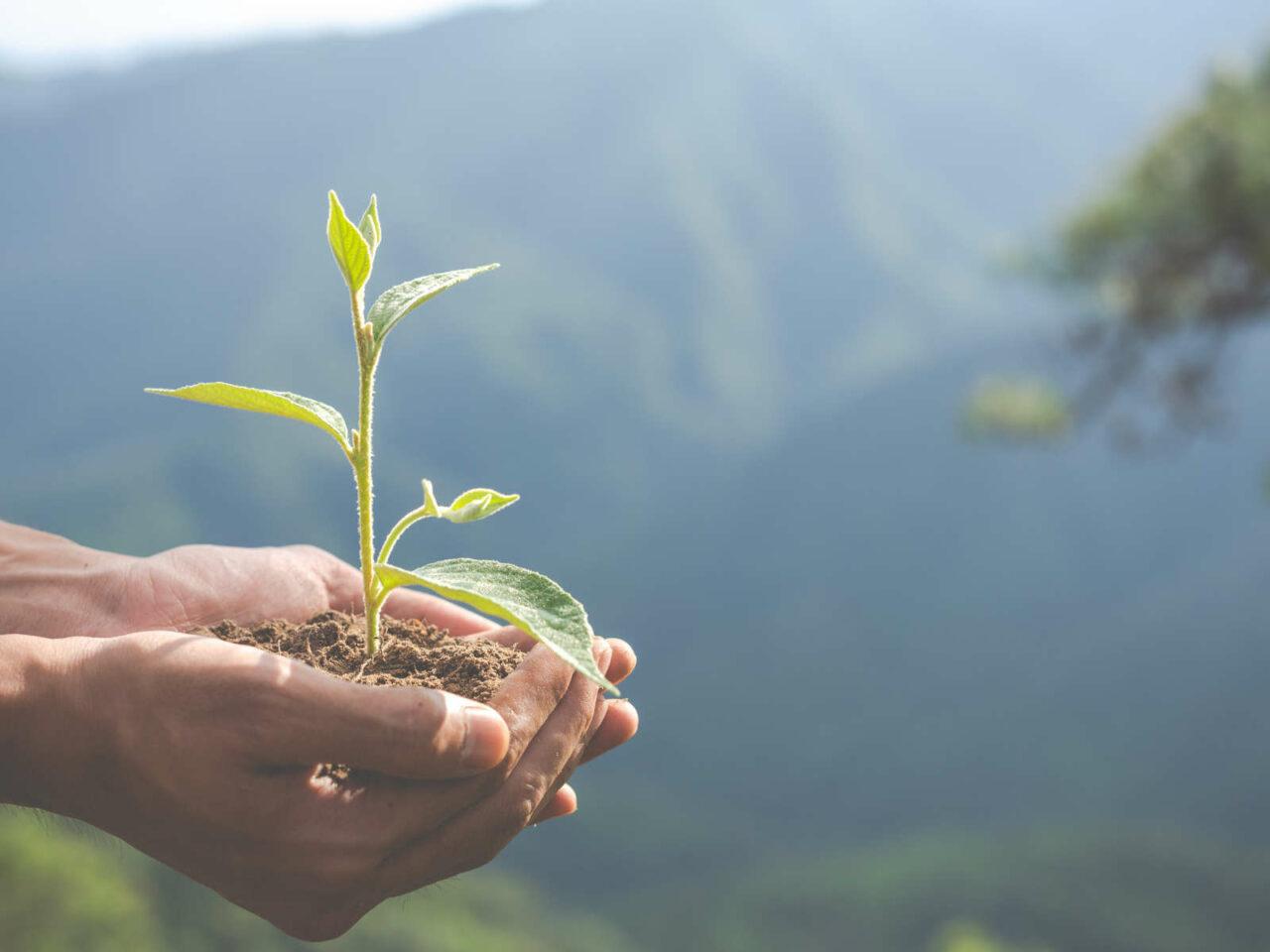 Déchets du bâtiment : Nouvelles obligations pour une démarche durable