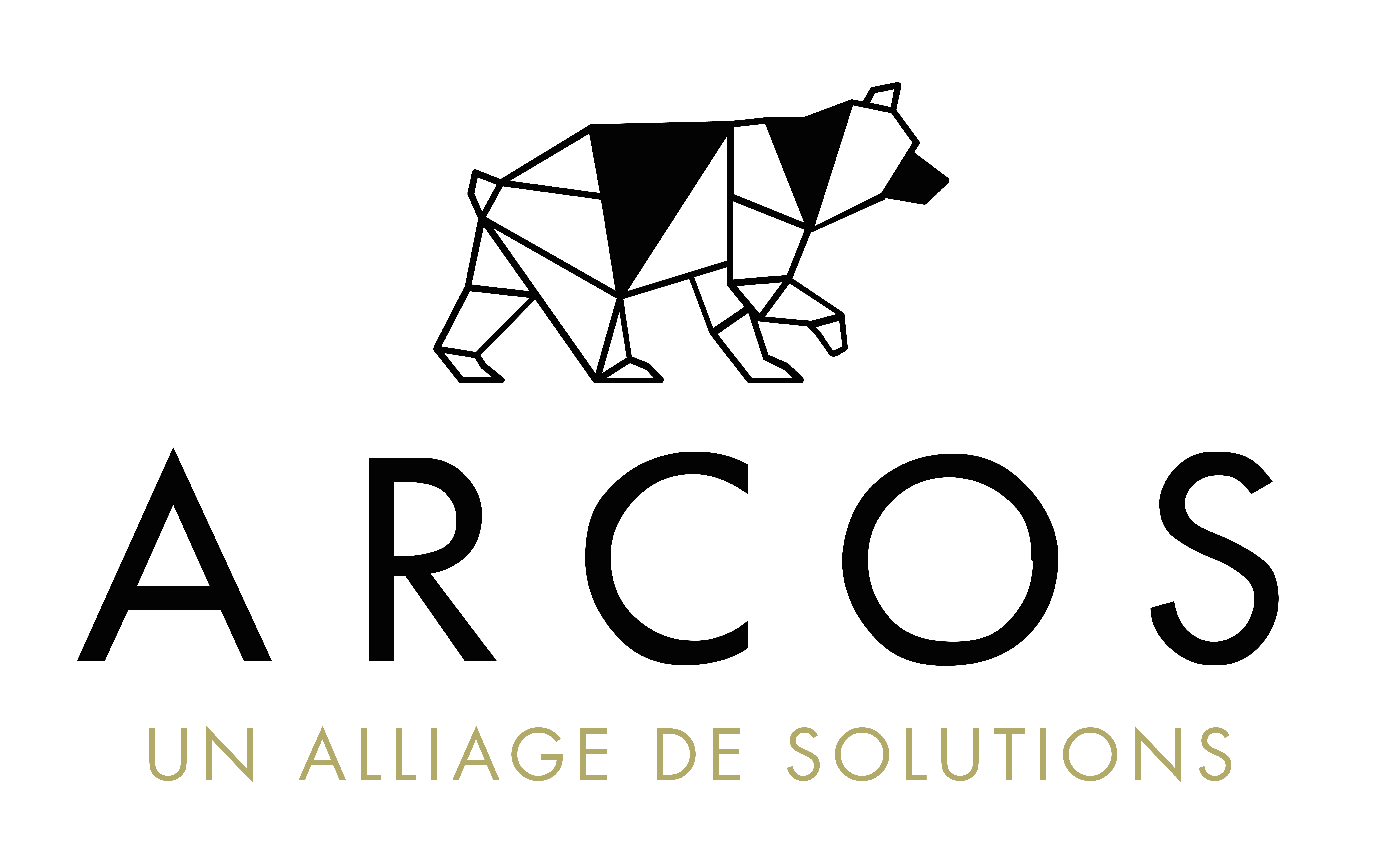 https://arcos-solution.com/wp-content/uploads/2021/07/Logotype-ANHOD-NOIR-OR.png